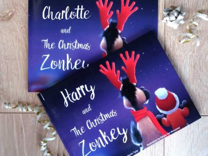The hidden message of The Christmas Zonkey